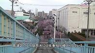 b16003s_entoubunsui-1.jpg