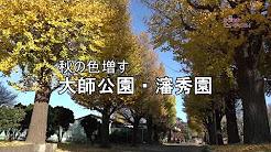 b17012w_akisinsyuen
