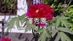b18008s_kakeashinoharu